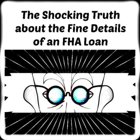 The Fine Details of MN FHA Loans